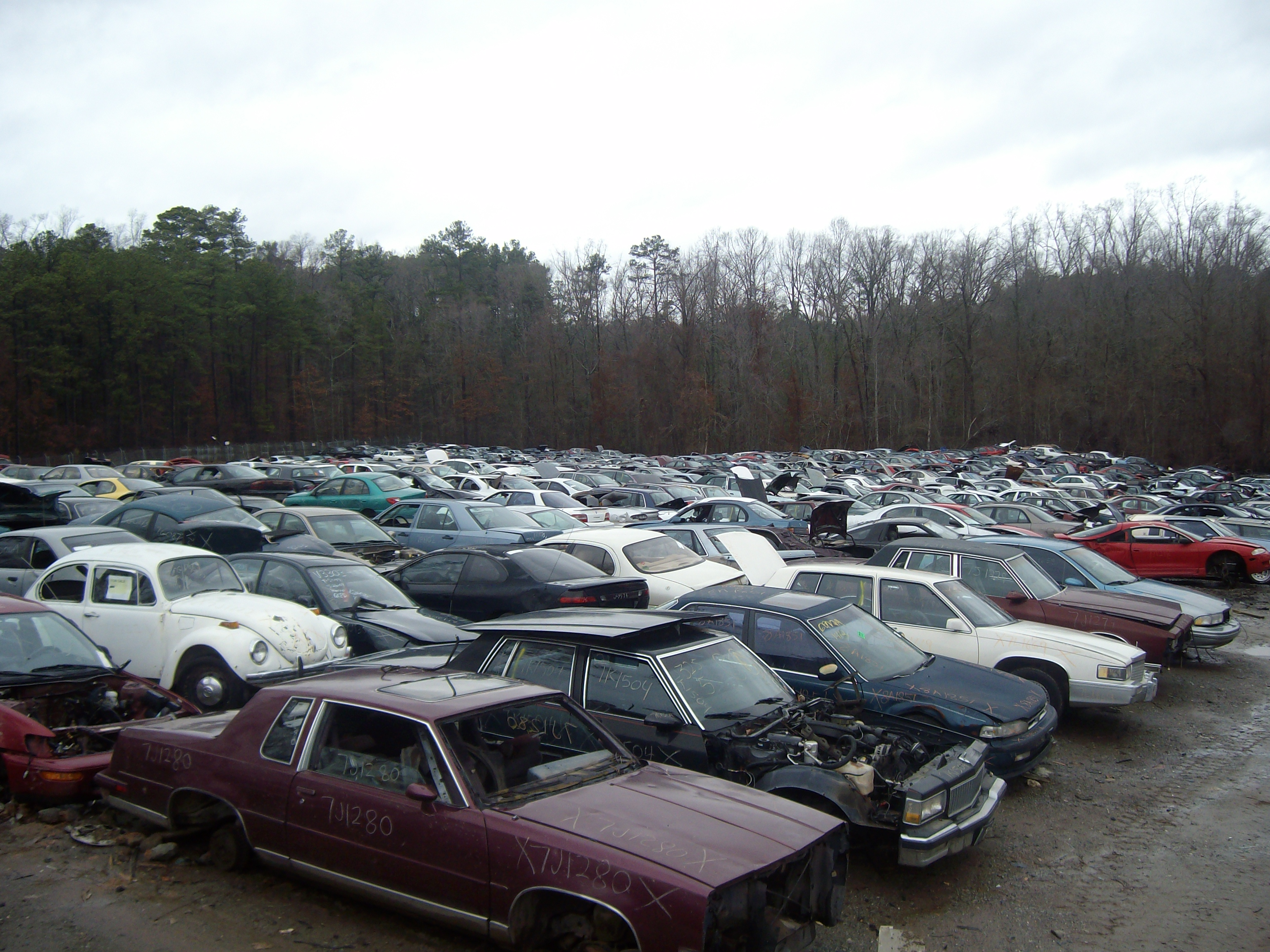 Salvage Cars Paterson New Jersey